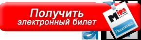e-ticket-turnikety-gotschlich-mips.png